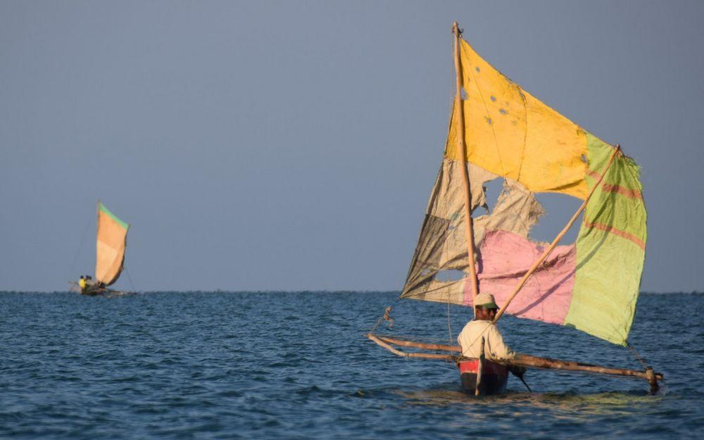 madagascar-kite103
